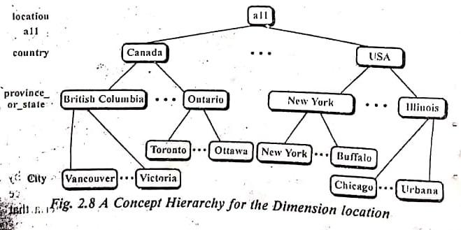 concept of hierarchy